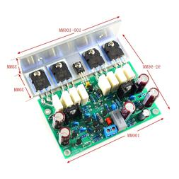 L20 Subwoofer Power Amplifier Board 200W 300W Bass Audio Ang
